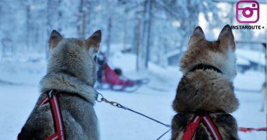 Yılbaşı Kuzey Işıkları Turu (Lapland)